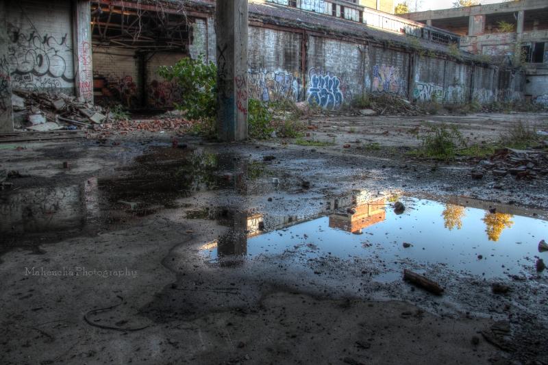 mp puddle.jpg